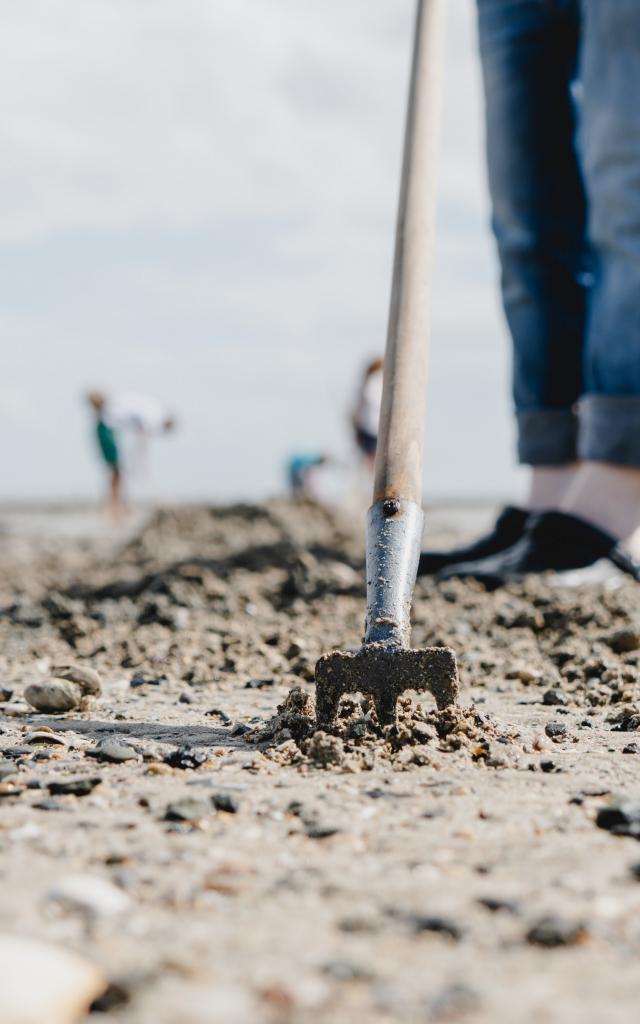 Rateau dans le sable pour la pêche à pied