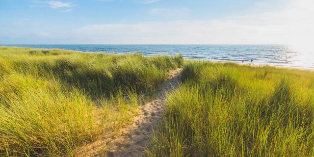 Plage et dunes d'Annoville