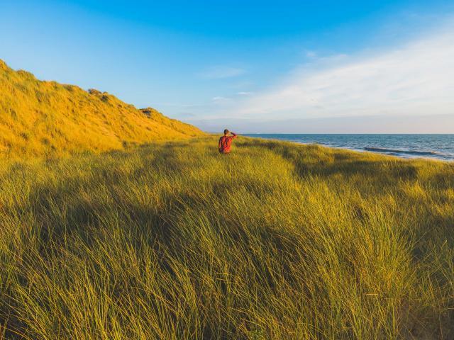Dunes d'Annoville et nature sauvage