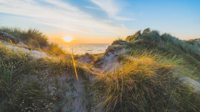 Les dunes d'Annoville au soleil couchant