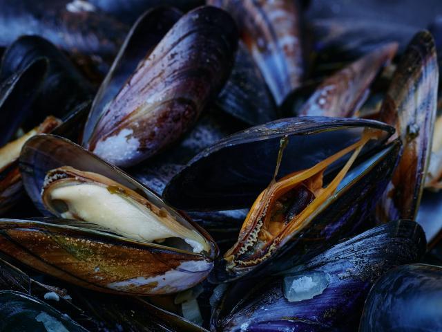 Les moules produits du terroir de coutances mer et bocage