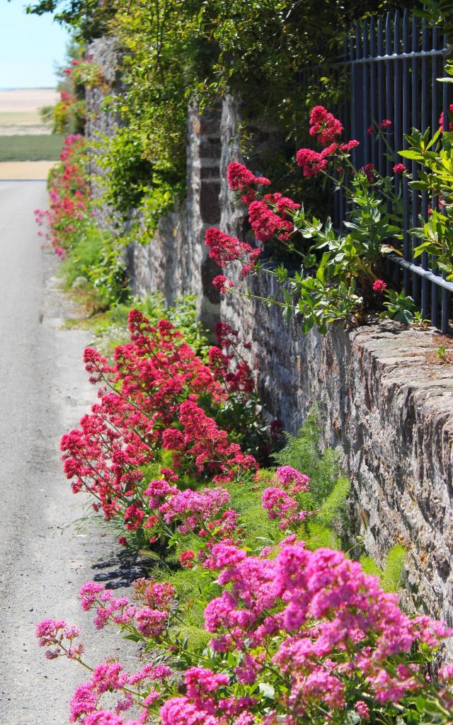 Jolie porte dans une ruelle de Regnéville-sur-Mer