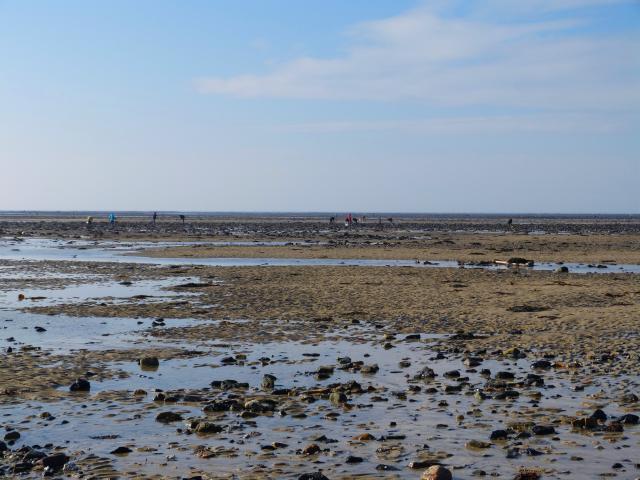 Grande marée - marée basse