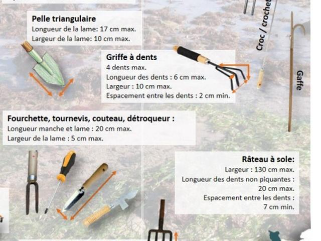 Outils de pêche dans le prospectus de l'APP2R