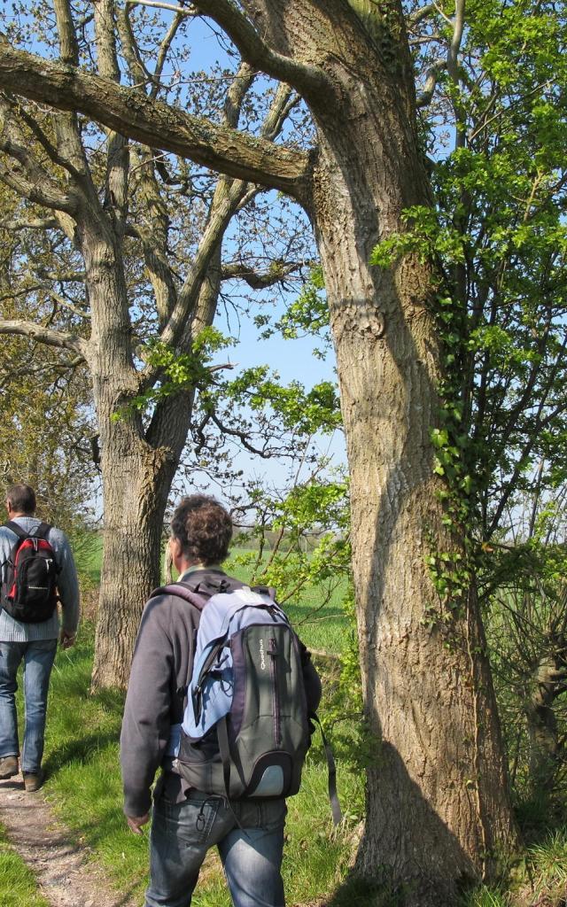 randonneurs dans le parc naturel des marais du Cotentin et du Bessin