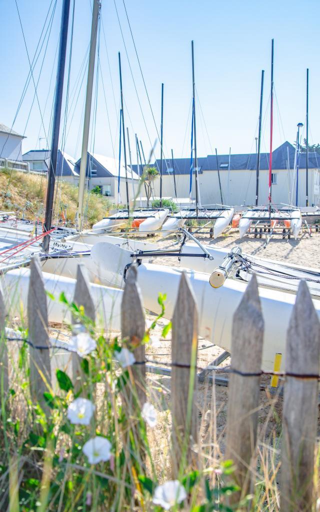 Catamarans de l'école de voile de Hauteville-sur-Mer