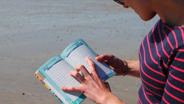 Consulter les horaires de marées pêche à pied à Coutances mer et bocage