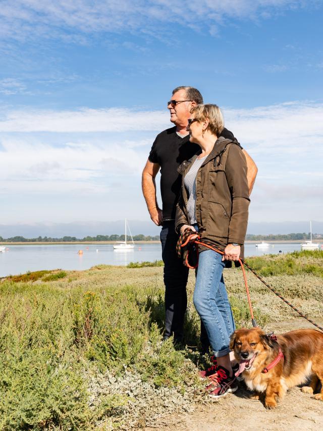 vaca,ces avec son chien : toutourisme et idées de balades