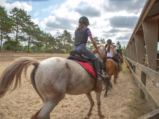 Séance d'équitation à Coutances mer et bocage