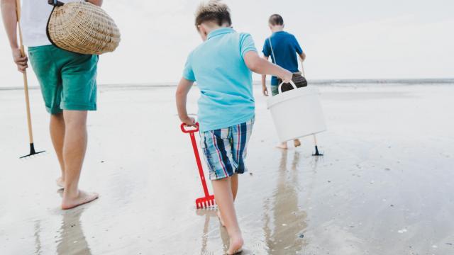 Pêche à pied avec les enfants