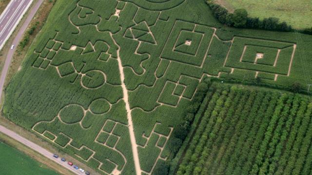 Labyrinthe de Maïs de Coutances