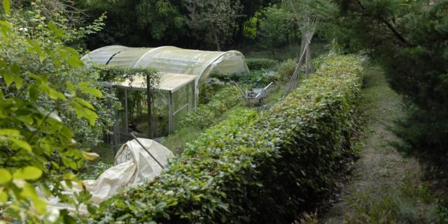Jardin Du Coteau De La Croute Coutances (4)