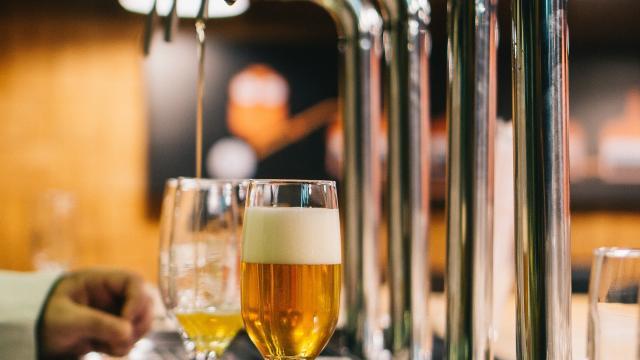 Journée Mondiale De La Biere Brasseurs De Coutances Mer Et Bocage (5)