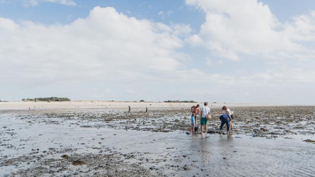 Vue sur l'estran pendant une marée basse à Agon-Coutainville