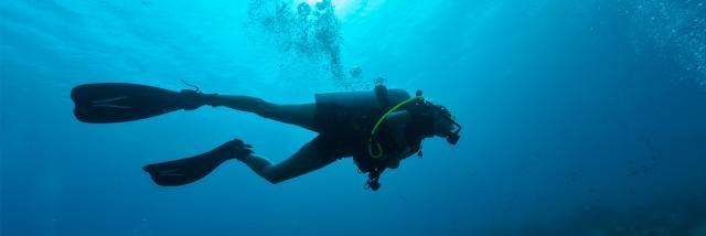 Cover Spot De Plongee Istock 511919824 1920x1080 1