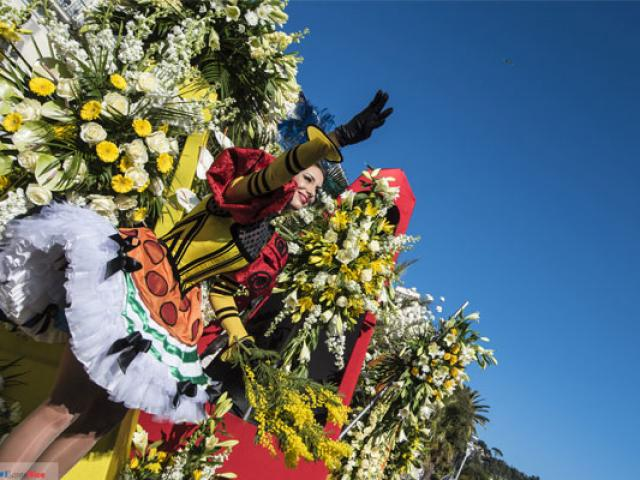 bataille-de-fleurs--otcn-557x40-1.jpg