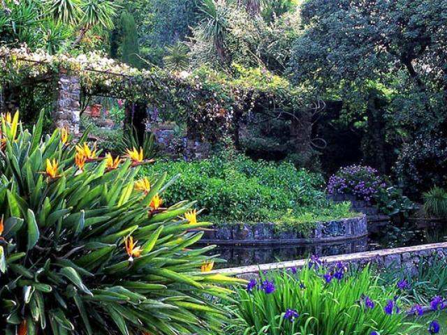 Jardin Clos Du Peyronnet Ville De Menton557x400