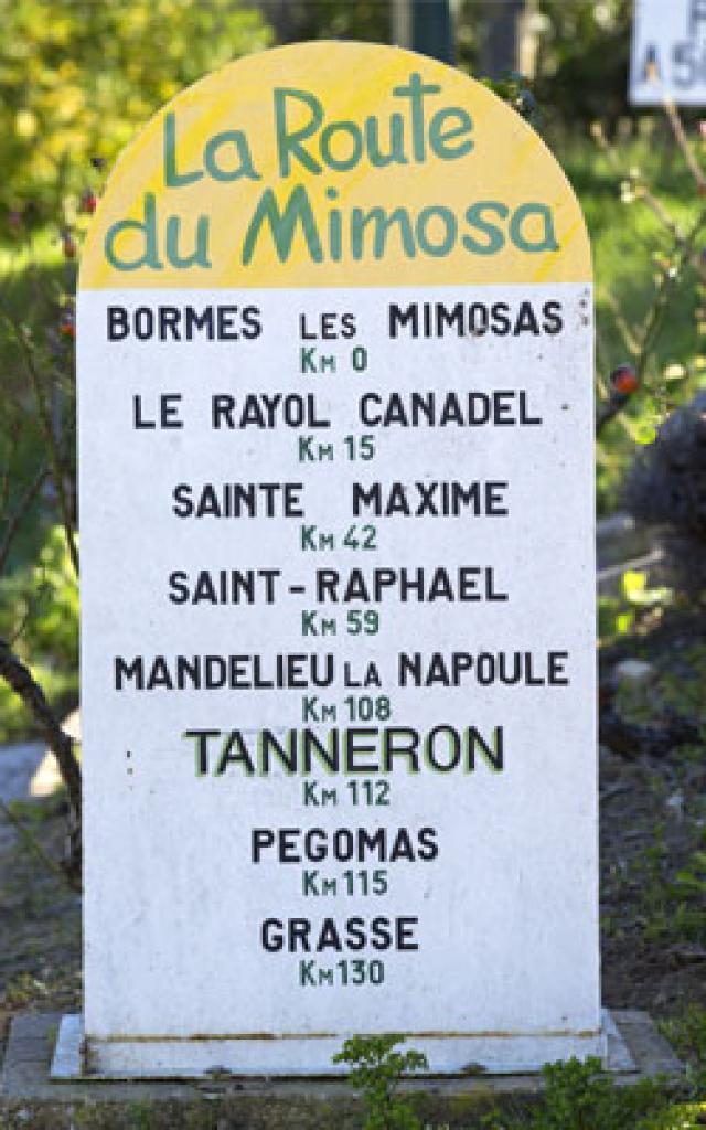 route-du-mimosa-2-cmoirenc-124967-272x400-1.jpg