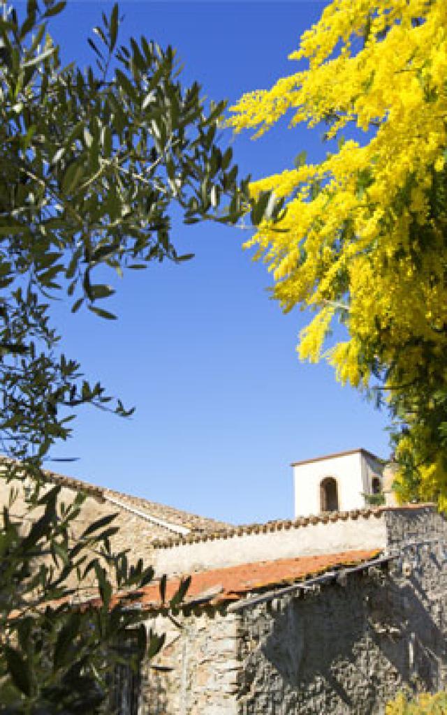 route-du-mimosa-cmoirenc-124984-272x400-1.jpg