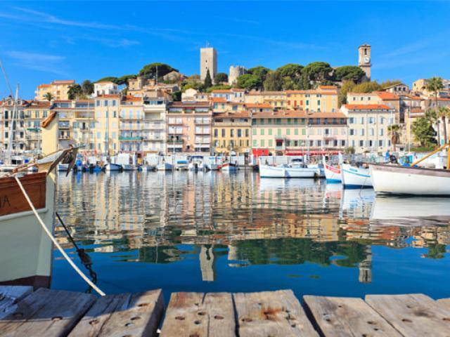 Suquet 2011 Fabre 10pal Fest Congres Cannes 557x400 1