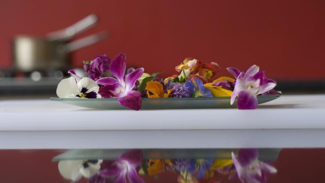 photo-atelierla-cuisine-des-fleurs-yves-terrillon.jpg