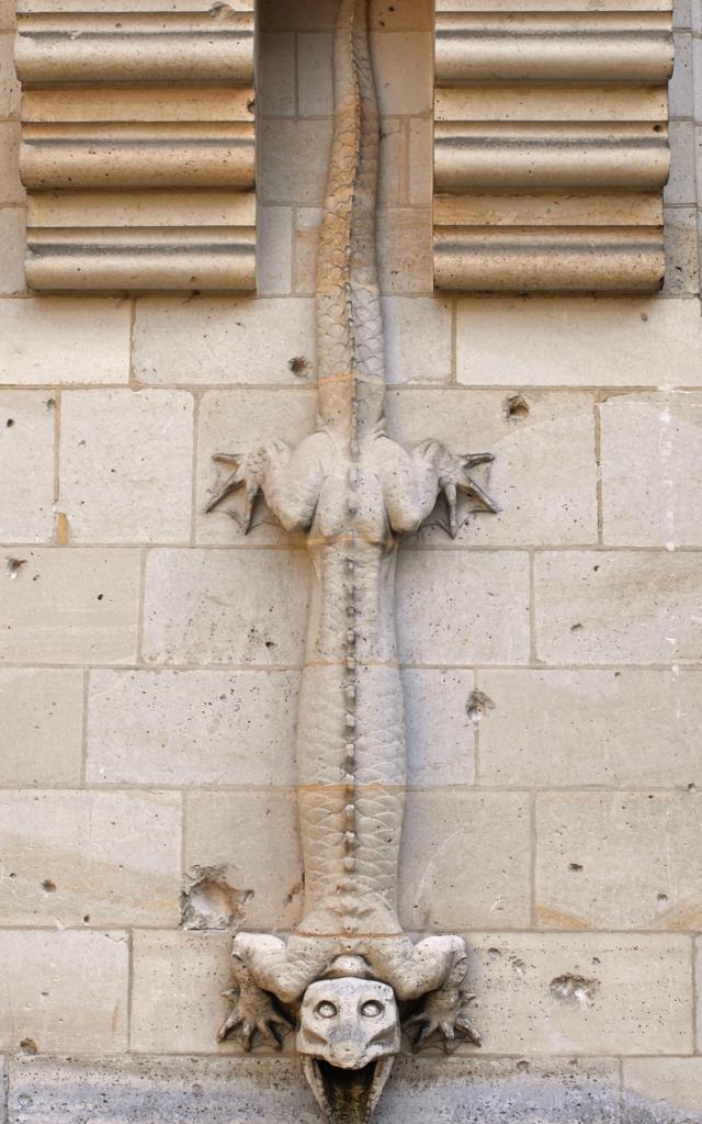 Château de Pierrefonds_ Cour d'honneur_ Descente d'eau en forme dite de