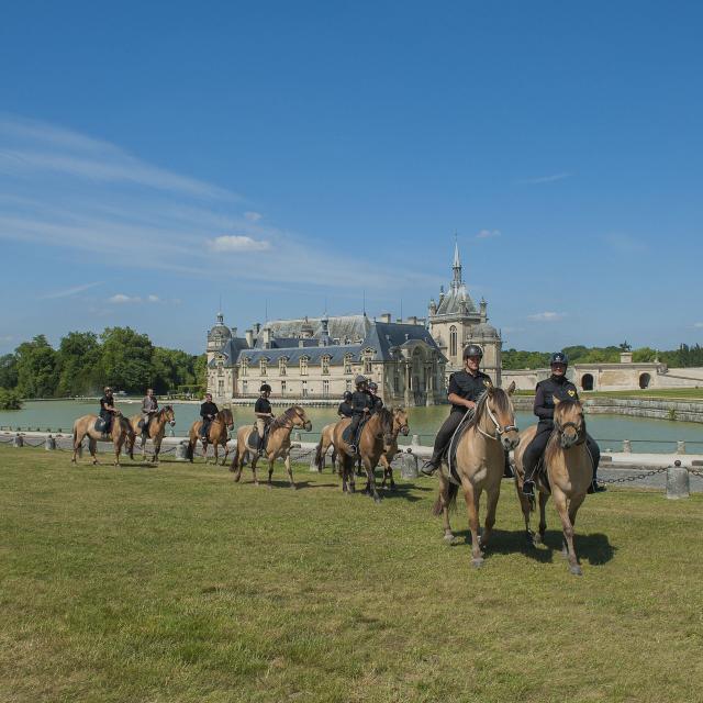 Chantilly_Chevaux Henson_Château de Chantilly © CRTC Hauts-de-France - Forent Cocquet