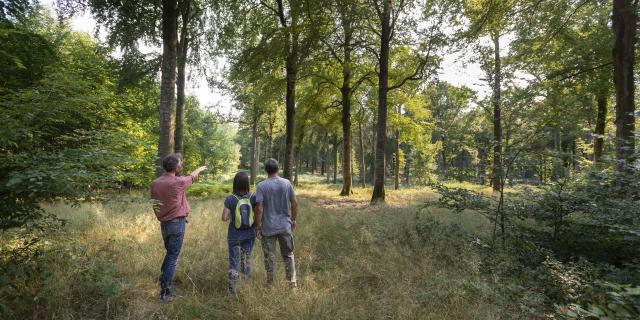 Crécy-en-Ponthieu _ Sortie Nature avec Naturopathe © CRTC Hauts-de-France - Nicolas Bryant
