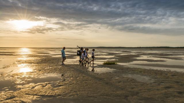 Plage de la Maye, Sortie nature de découverte de la Baie de Somme © CRTC Hauts-de-France - Stéphane Bouilland