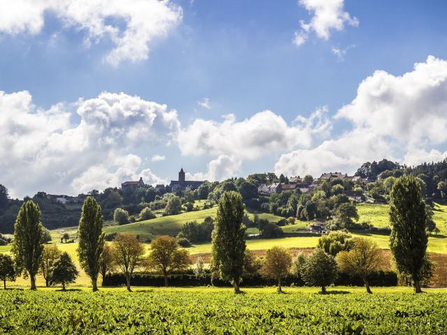 Paysage de Flandre ©CRTC Hauts-de-France - Eric GATINEAU