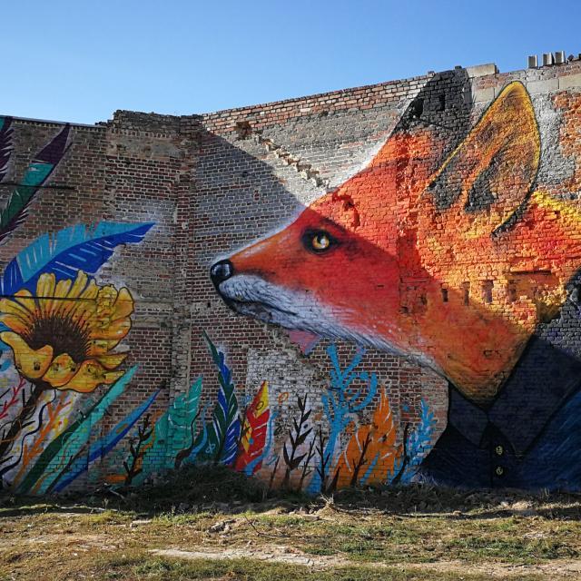 Saint-Quentin _ street art © Ville de Saint-Quentin - service culture
