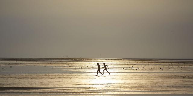 Le Crotoy _ Balade sur la Plage à Marée Basse © CRTC Hauts-de-France - Guillaume Crochez