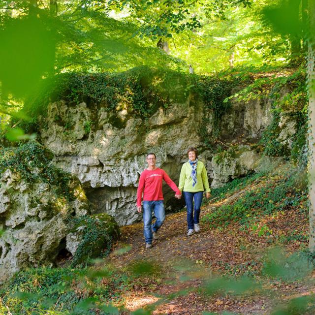 Saint-Gobain _ Randonnée en forêt de Saint-Gobain @ Aisne Tourisme - Vincent Colin