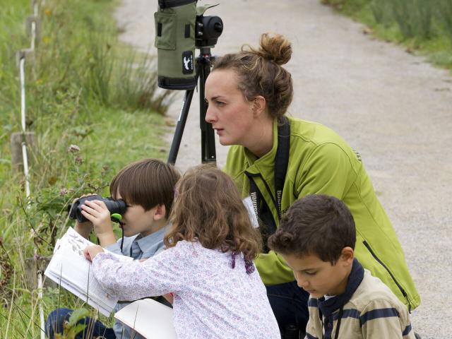 Saint-Quentin-en-Tourmont_Parc ornithologique du Marquenterre©CRTC Hauts-de-France_Anne-Sophie Flament