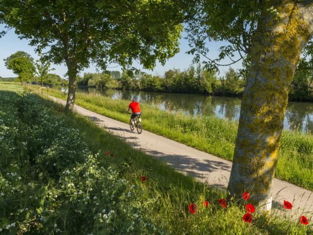 St-Valery-sur-Somme, promenade en vélo le long du Canal de la Somme sur la