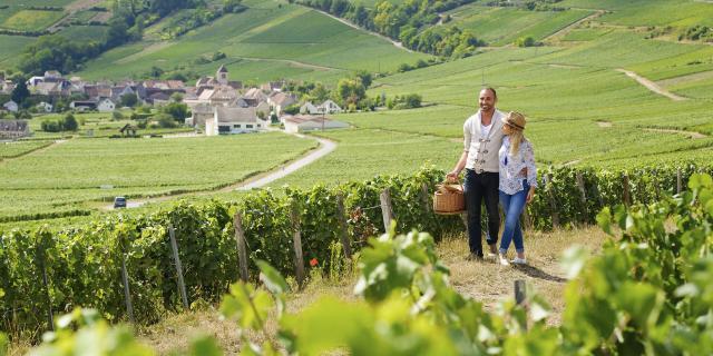Aisne, Randonnée dans le vignoble de champagne ©CRTC Hauts-de-France - Vincent Colin