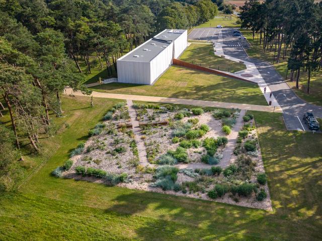 Vimy _ Jardin de la Paix © Art & Jardins Hauts de France - Yann Monel
