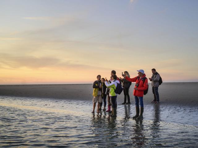 Bay of Somme_ walk in the nature with a guide ©CRTC Hauts-de-France - Nicolas Bryant
