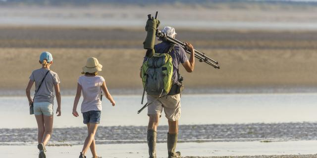 Baie de Somme_Sortie nature aux plages de la Maye à marée basse pour découvrir les animaux de la baie, dont les phoques © CRTC Hauts-de-France - Stéphane BOUILLAND
