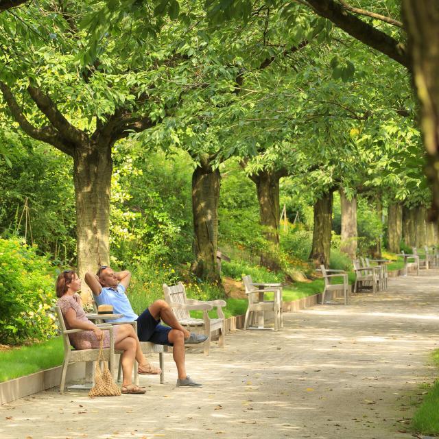 Argoules_Jardins Abbaye de Valloires©CRTC Hauts-de-France – Anne - Sophie Flament