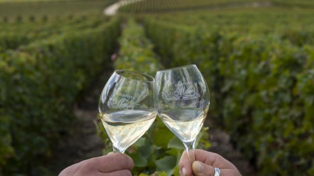 Champagne © CRTC Hauts de France - Benjamin Teissedre