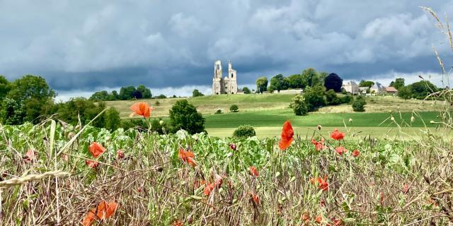Mont Saint Eloi Et Coquelicots @claire Decraene Arras Pays D'artois Tourisme