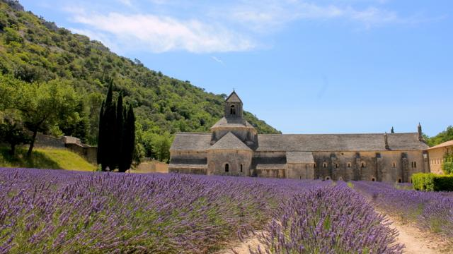 Abbaye De Senanque Gordes Provence C Chillio