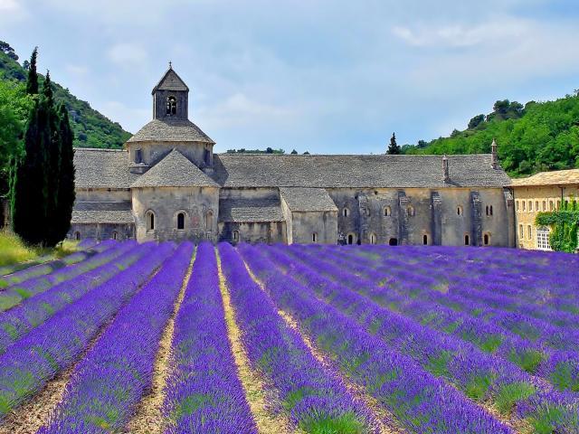abbayedesenanque-luberon-provence-amouton-2.jpg