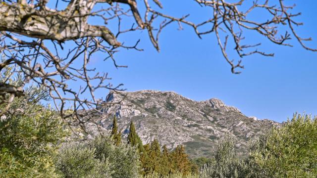 Alpilles Provence P Magoni