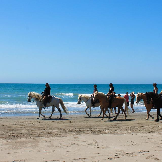 balade-cheval-plage-camargue-cchillio-3.jpg