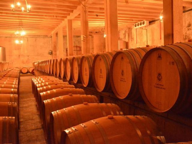 Chaix Vignobles Provence Ariviere