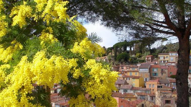 copyright-omt-bormes-vieux-village-de-bormes-1080x480px-1.jpg