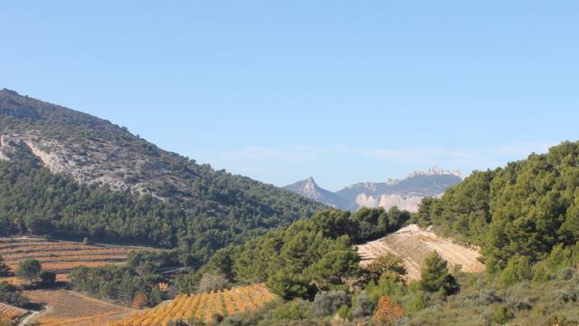 Dentelles De Montmirail Provence C Chillio C
