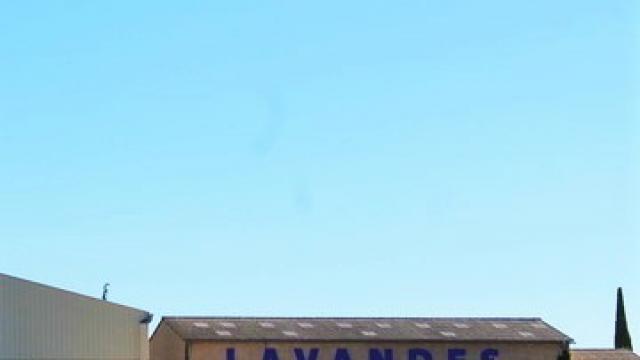Distillerie Lavande Valensole Provence C Chillio 1